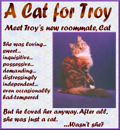 A Cat For Troy synopsis400
